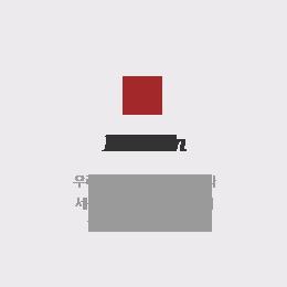 company_mission(1)