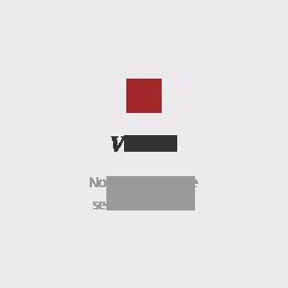 company_vision